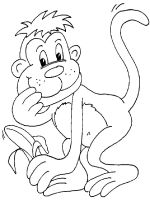 Monkey-animal-coloring-pages-360