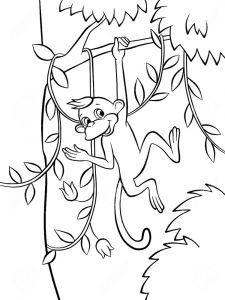Monkey-animal-coloring-pages-365