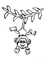 Monkey-animal-coloring-pages-367