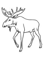 Moose-coloring-pages-11