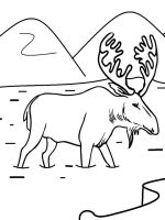 Moose-coloring-pages-12