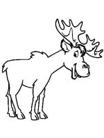 Moose-coloring-pages-9