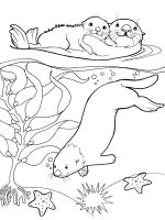 Otter-coloring-pages-1