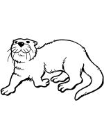 Otter-coloring-pages-12