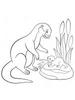 Otter-coloring-pages-17