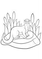 Otter-coloring-pages-22