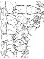 Otter-coloring-pages-25