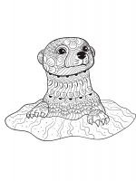 Otter-coloring-pages-8