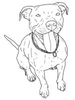 Pitbull-coloring-pages-2