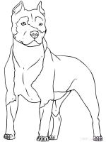 Pitbull-coloring-pages-5