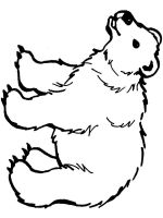 Polar-Bear-coloring-pages-10