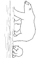 Polar-Bear-coloring-pages-12