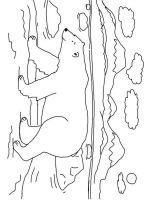 Polar-Bear-coloring-pages-15