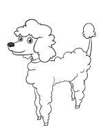 Poodle-coloring-pages-12
