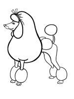 Poodle-coloring-pages-3