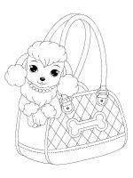 Poodle-coloring-pages-5