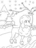 Poodle-coloring-pages-7