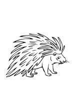 Porcupine-coloring-pages-6