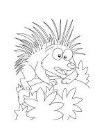 Porcupine-coloring-pages-8