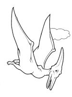 Pterodactyl-coloring-pages-19