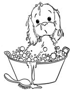 Puppy-coloring-pages-14