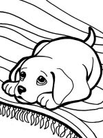 Puppy-coloring-pages-16
