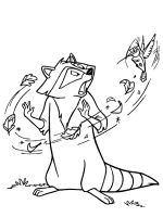 Raccoon-animal-coloring-pages-335