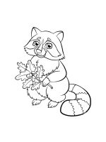 Raccoon-coloring-pages-17