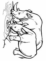 Rhino-animal-coloring-pages-339