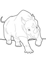 Rhino-animal-coloring-pages-345