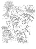 Scorpio-coloring-pages-6