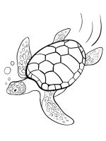 Sea-Turtle-coloring-pages-1