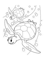 Sea-Turtle-coloring-pages-13