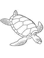 Sea-Turtle-coloring-pages-16