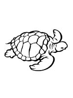 Sea-Turtle-coloring-pages-19
