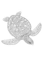 Sea-Turtle-coloring-pages-21