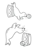 Seals-coloring-pages-7