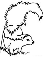 Skunk-coloring-pages-1