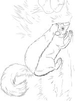 Skunk-coloring-pages-14