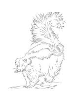 Skunk-coloring-pages-17