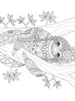 Sloth-coloring-pages-4