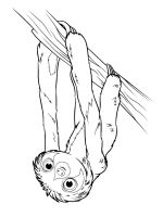 Sloth-coloring-pages-7