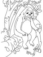 Sloth-coloring-pages-8