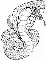 Snake-coloring-pages-17
