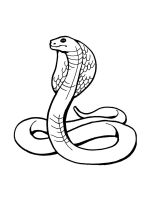 Snake-coloring-pages-27