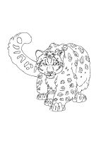 Snow-Leopard-coloring-pages-7