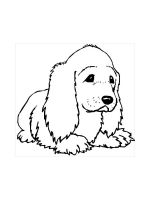 Spaniel-coloring-pages-10