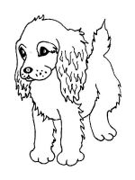 Spaniel-coloring-pages-4