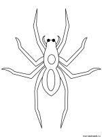 Spider-coloring-pages-2