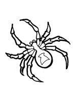 Spider-coloring-pages-20